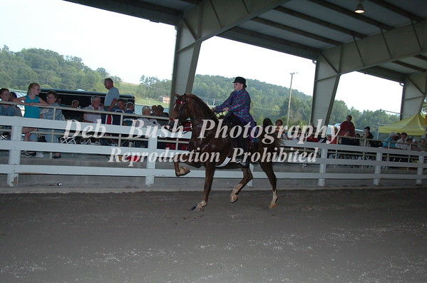 CL 20 AMATEUR OWNED AND TRAINED OPEN