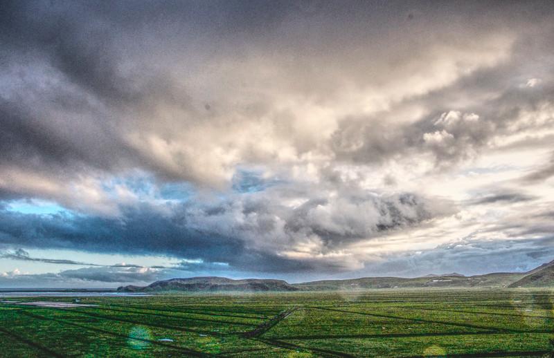 Iceland_Heather 4479.jpg