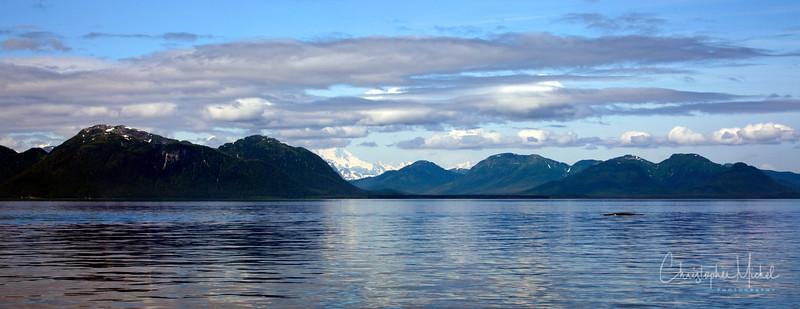 071709_glacierbay_2253.jpg