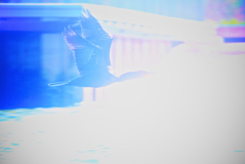 Kayaking off Tiana.