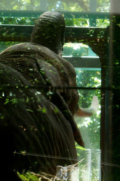 ZooClass-5.jpg