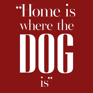 home is where the dog is.jpg