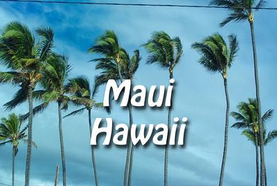 2013 03 07 | Maui