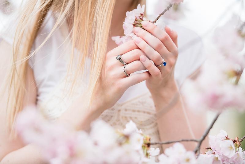 Cherry Blossoms (46 of 182).jpg