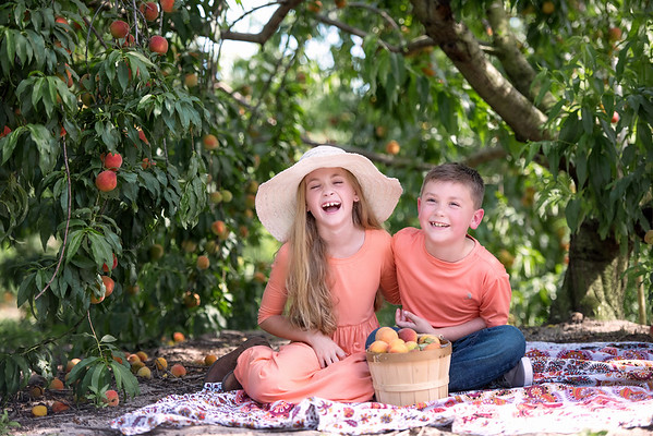 Hess Family Peaches April 2019