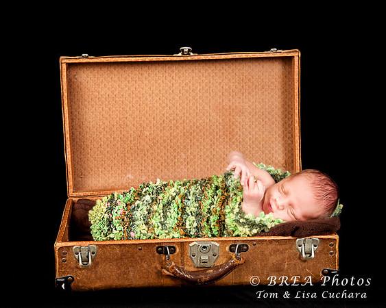 TJ 6 days old