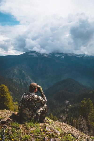 Idaho Spring Bear Hunt