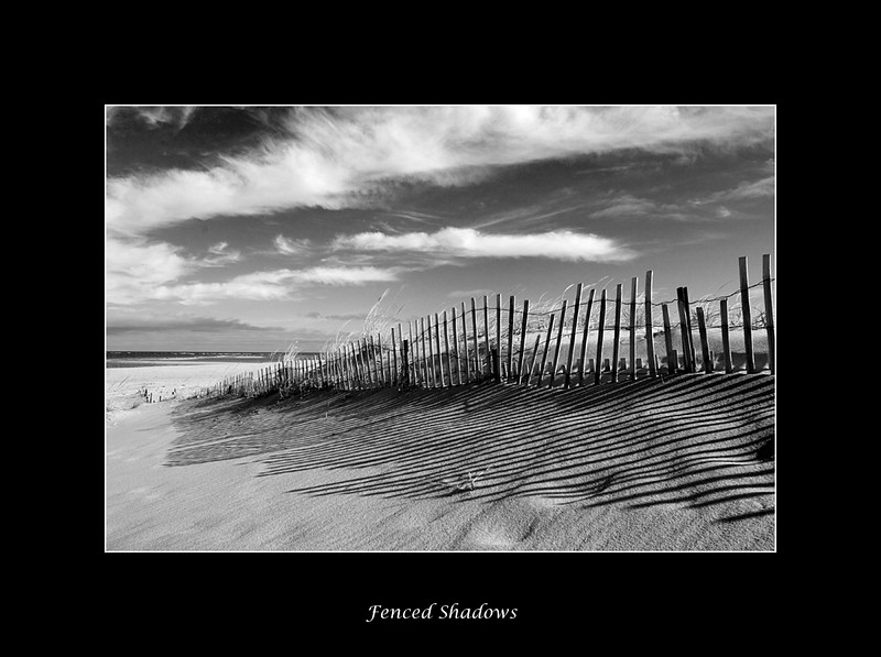 chatham-dunes-bw.jpg