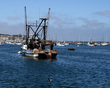 Monterey - Carmel - California