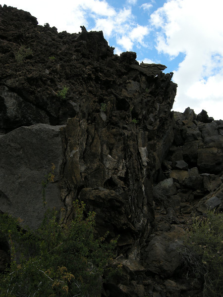 Dark foreboding chunks of cooled lava, with plants slowly infiltrating.