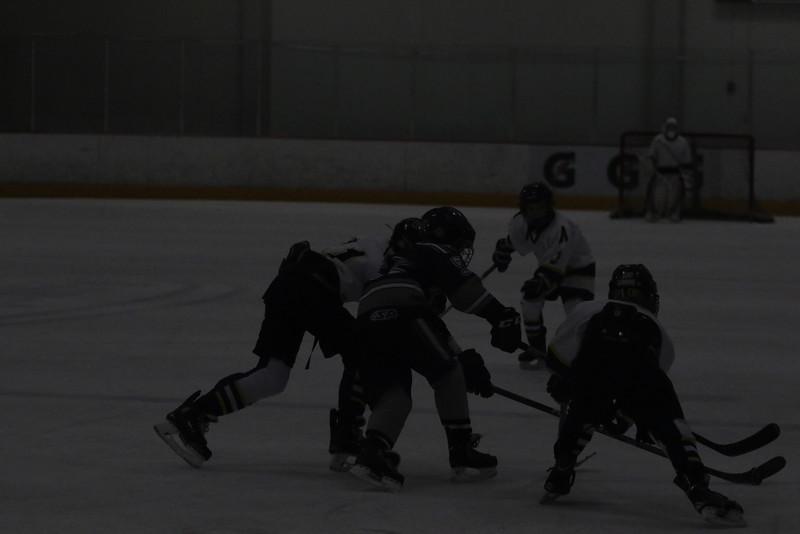 2015-Nov_25-OGradySon-Hockey_SilverSticks-JPM0133.jpg