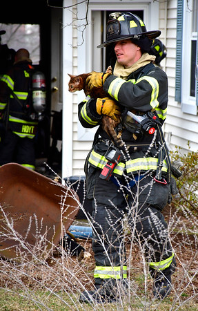 1/10/2020 Mike Orazzi | Staff A family cat is removed after a fire on Clearview Avenue in Bristol. The home was rendered uninhabitable displacing two adults, a baby and four pets.