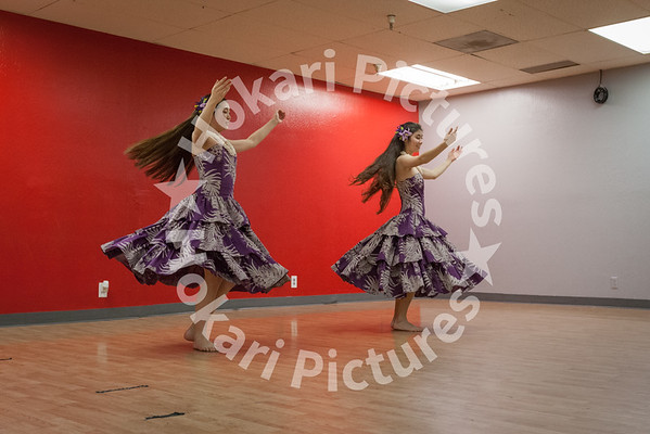 Hula Dance 7