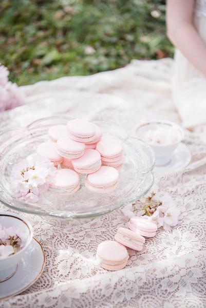 Cherry Blossoms (78 of 182).jpg