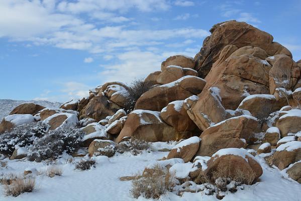 Joshua Tree with Snow - Dec 31, 2014