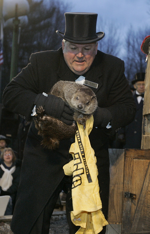 ". Handler Bill Deeley pulls a ""Terrible Towel\"" and Punxsutawney Phil, the weather predicting groundhog, from his den before the prediction of six more weeks of winter was announced in Punxsutawney, Pa. on Thursday, Feb. 2, 2006. The towel is used by Pittsburgh Steelers fans to show support for their team who are playing in the Super Bowl. (AP Photo/Keith Srakocic)"