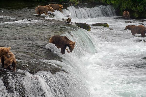 Alaska and Katmai National Park