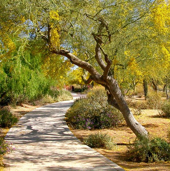 Sedona Arizona 391 edited.jpg