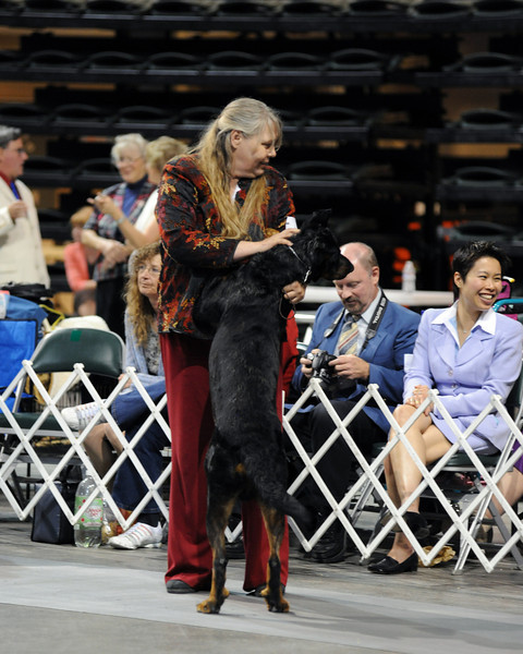 Buckhorn Valley Kennel Club 2010