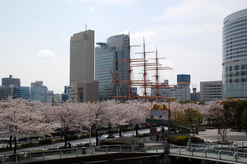 08-Japan2011_0103.JPG