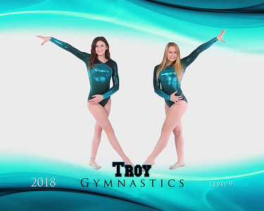 Troy Gymnastics Team Pictures 17-18