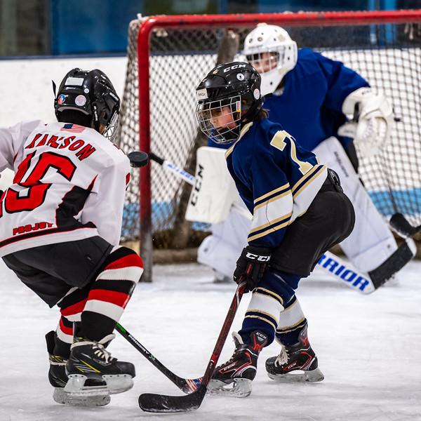 2019-Squirt Hockey-Tournament-105.jpg