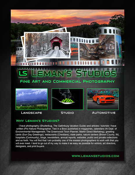 Leman's Studio 2015 Marketing