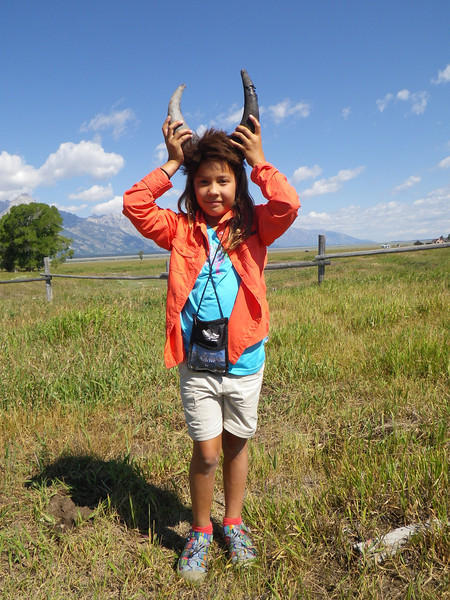 7.28.13 Wyoming's Watchable Wildlife