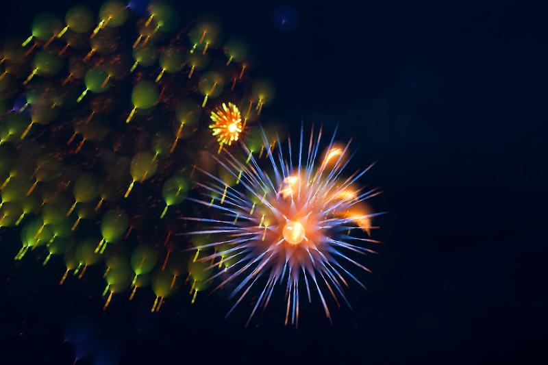 fireworks_082.jpg