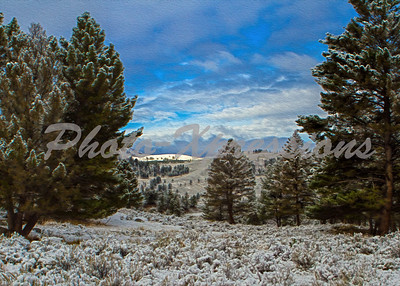 Yellowstone Park 2013