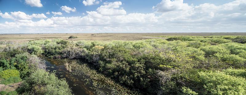 Everglades-46-Pano-i2.jpg