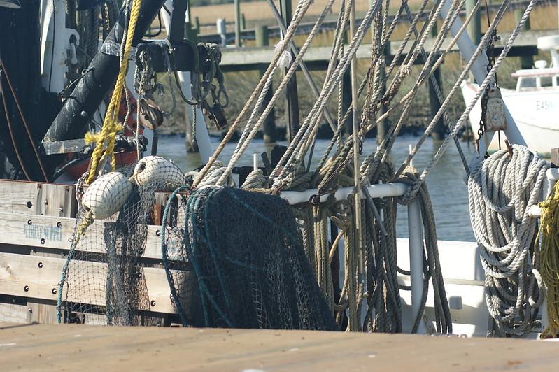 Campaign, Shrimp Boat 082.jpg