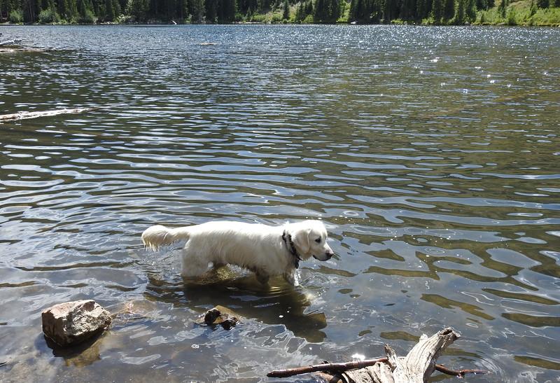 Hessie Trail to Lost Lake 2019 (128).JPG