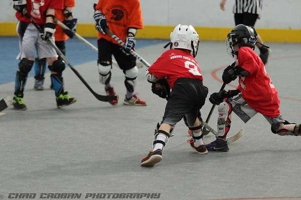 Hudson Youth Deck Hockey Hannaford Monarchs