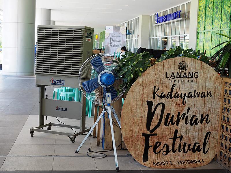 Lanang-Kadaywan-Festival.jpg