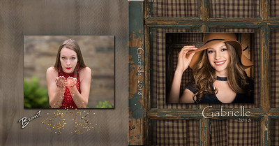 Senior Picture & Portrait Photographers Somerset County PA   Brant Photography
