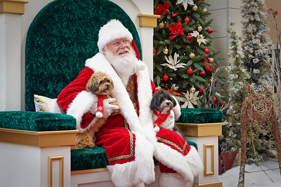 Pet Photos with Santa - Dec 1, 2019