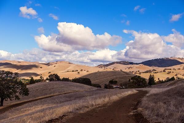 Back Creek Trail - Mt. Diablo State Park, November 10, 2015
