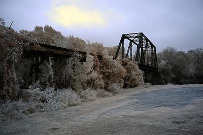 CADDO LAKE 2010
