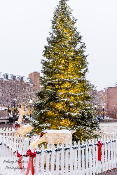 Snowy old town-127.jpg