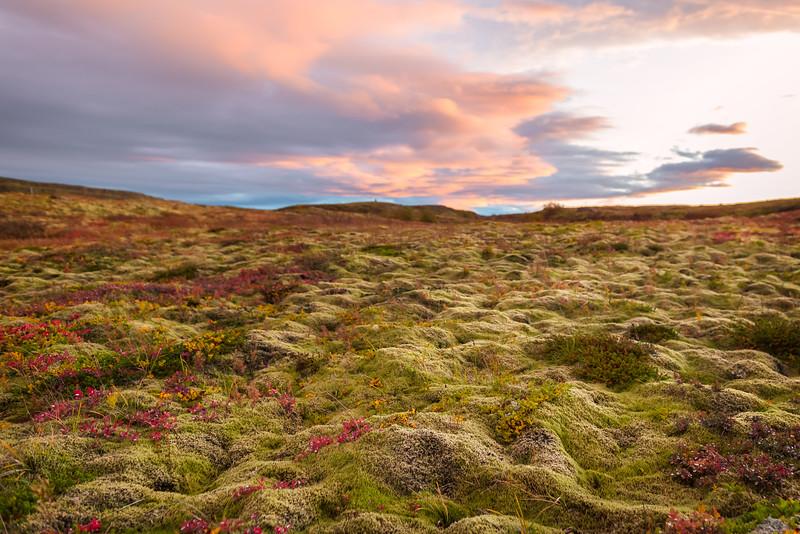 Iceland 2017-103.jpg