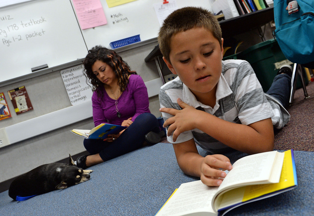. Diego\'s Dudes lunchtime reading club at Felton Elementary School in Lennox. Teacher Alex Carrera brings her Chihuahua Diego to class as a mascot to help boys improve reading skills. At right is  Edgar Vera. Photo by Brad Graverson 5-15-13