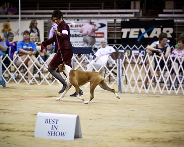 "2011-06-18 Texarkana Best in Show Terri Galle & ""Millee"""