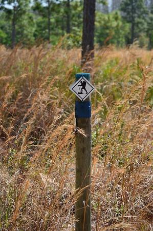 Hillsborough Hiking Spree Logs
