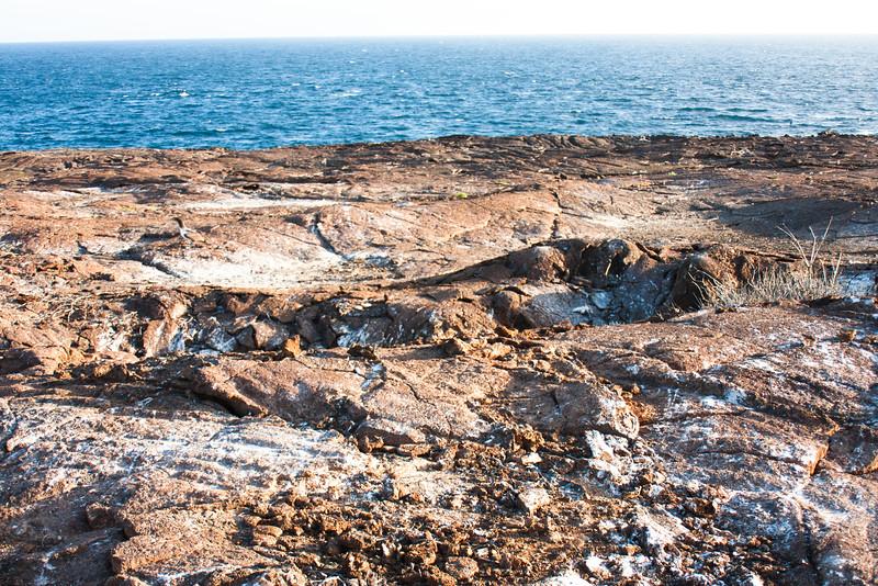 Hard Ground : Journey into Genovesa Island in the Galapagos Archipelago