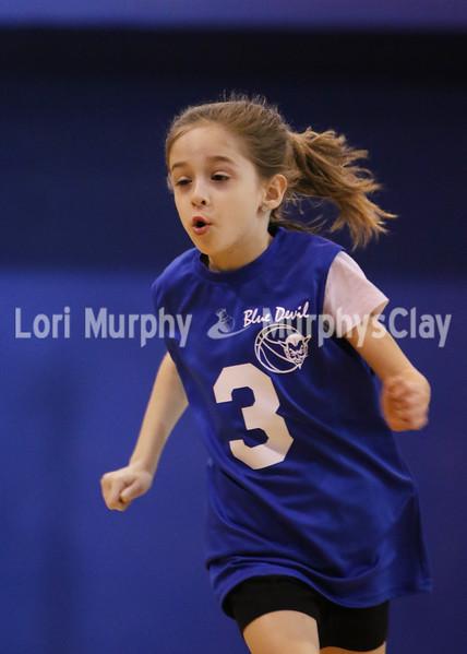 Blue Devil Girls Basketball 2017