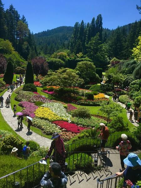 botanical garden with colorful flowers
