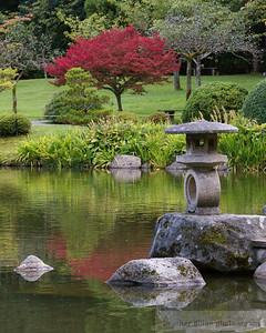 2009-10 Japanese Garden