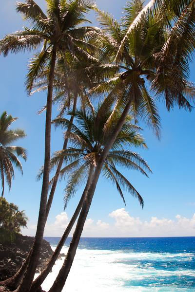 Hawaii_072615_0054_EastCoastHI.jpg