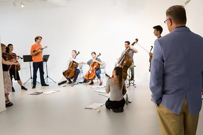 Donor - Palaver Strings